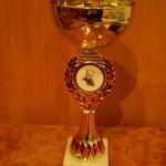 Кубок переможцю змагань